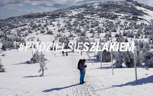 Szlak ze Szklarskiej Poręby do Karapcza przez Szrenicę, Śnieżne Kotły i Śnieżkę