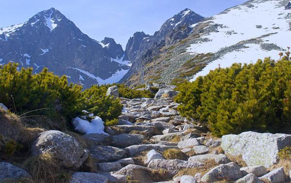 Tatry Słowackie – jakie szlaki warto zwiedzić? Co można zobaczyć po słowackiej stronie Tatr?